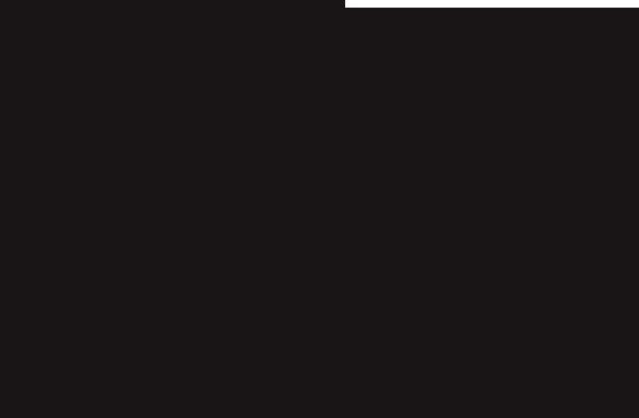 2 penguins