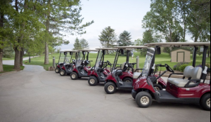 Raccoon Creek Carts